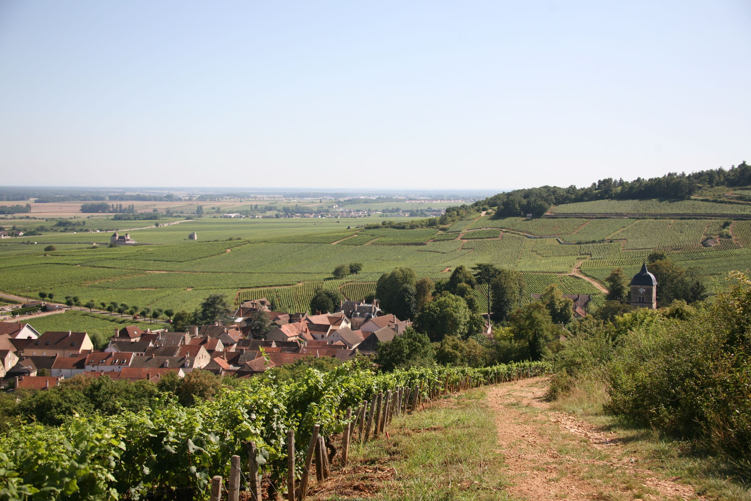 Chambolle-Musigny (et ses gran...