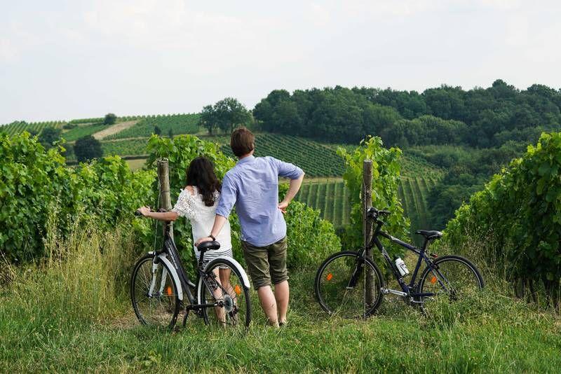Côtes de Bordeaux-Saint-Macair...