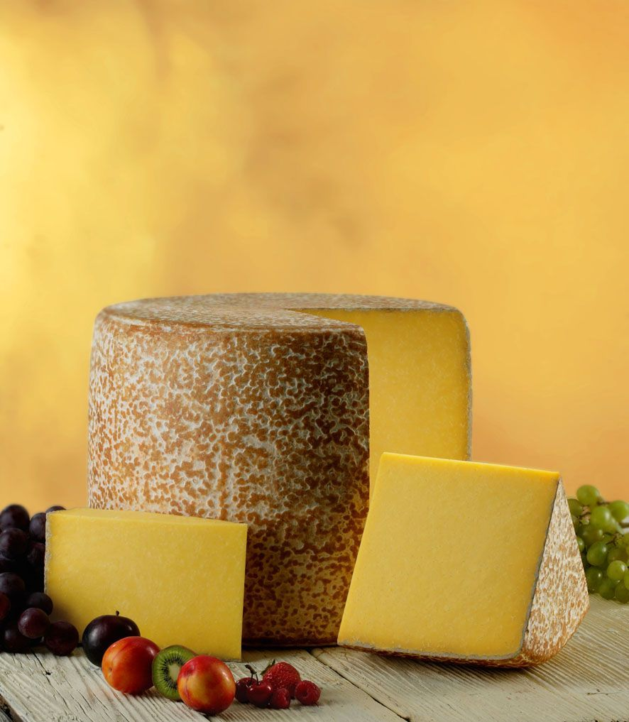 Cantal ou Fourme de Cantal