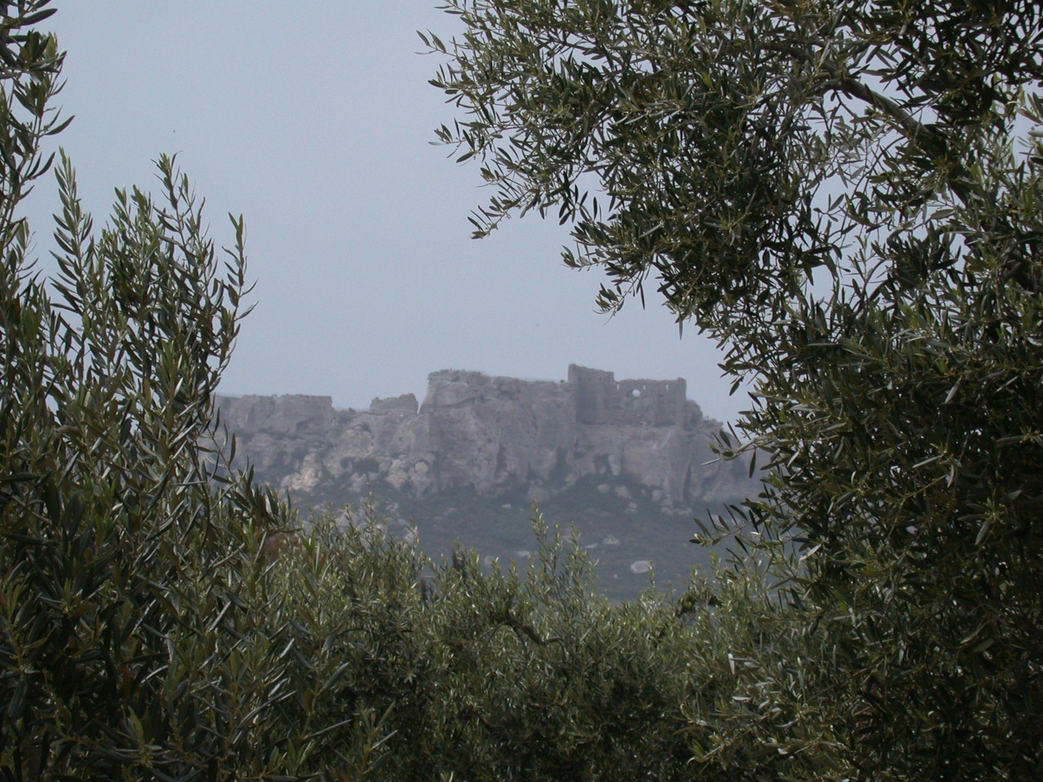 Huile d'olive de la Vallée des Baux de Provence