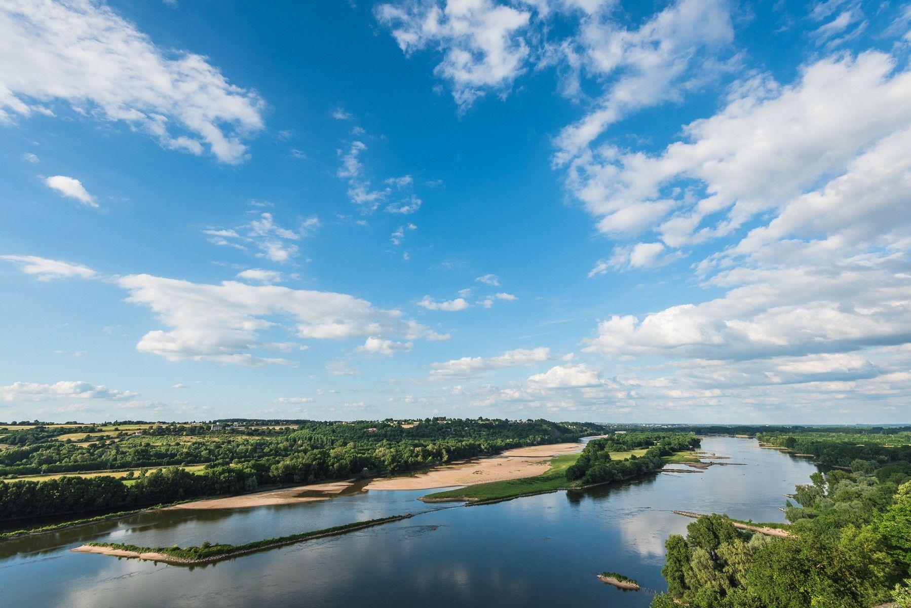 Muscadet Coteaux de la Loire